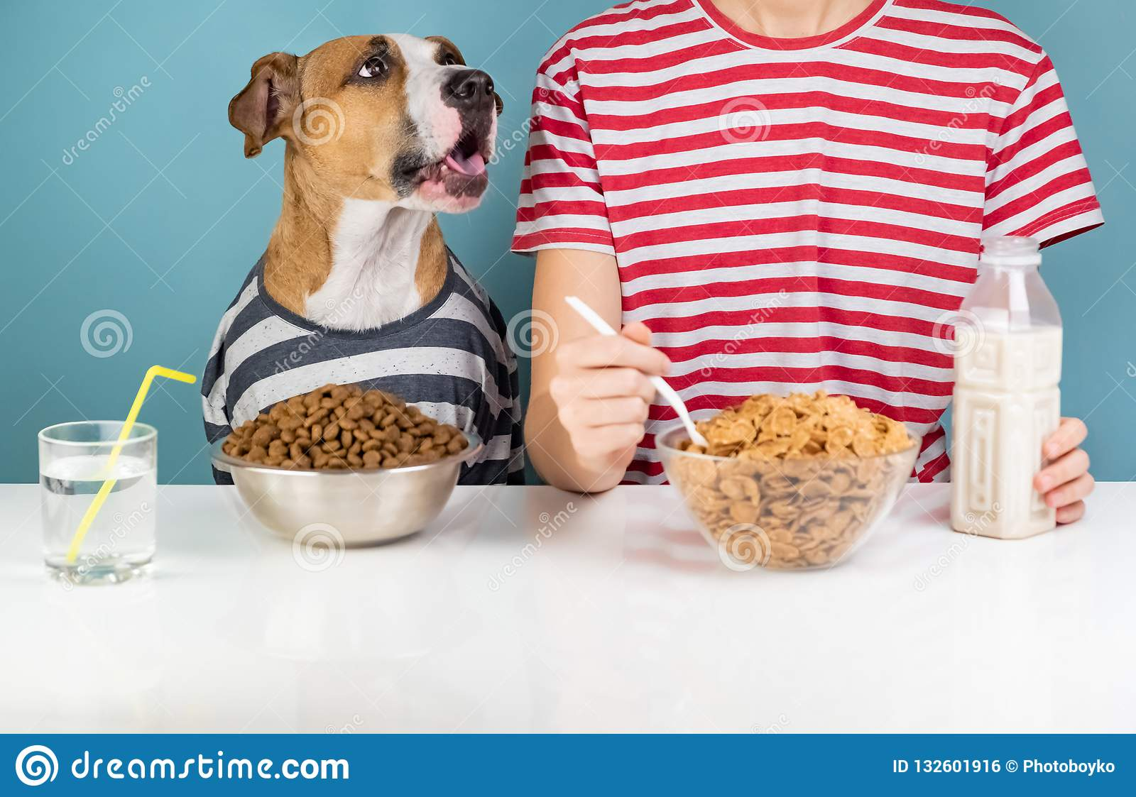 Hungry dog and human having breakfast together. Minimalistic ill