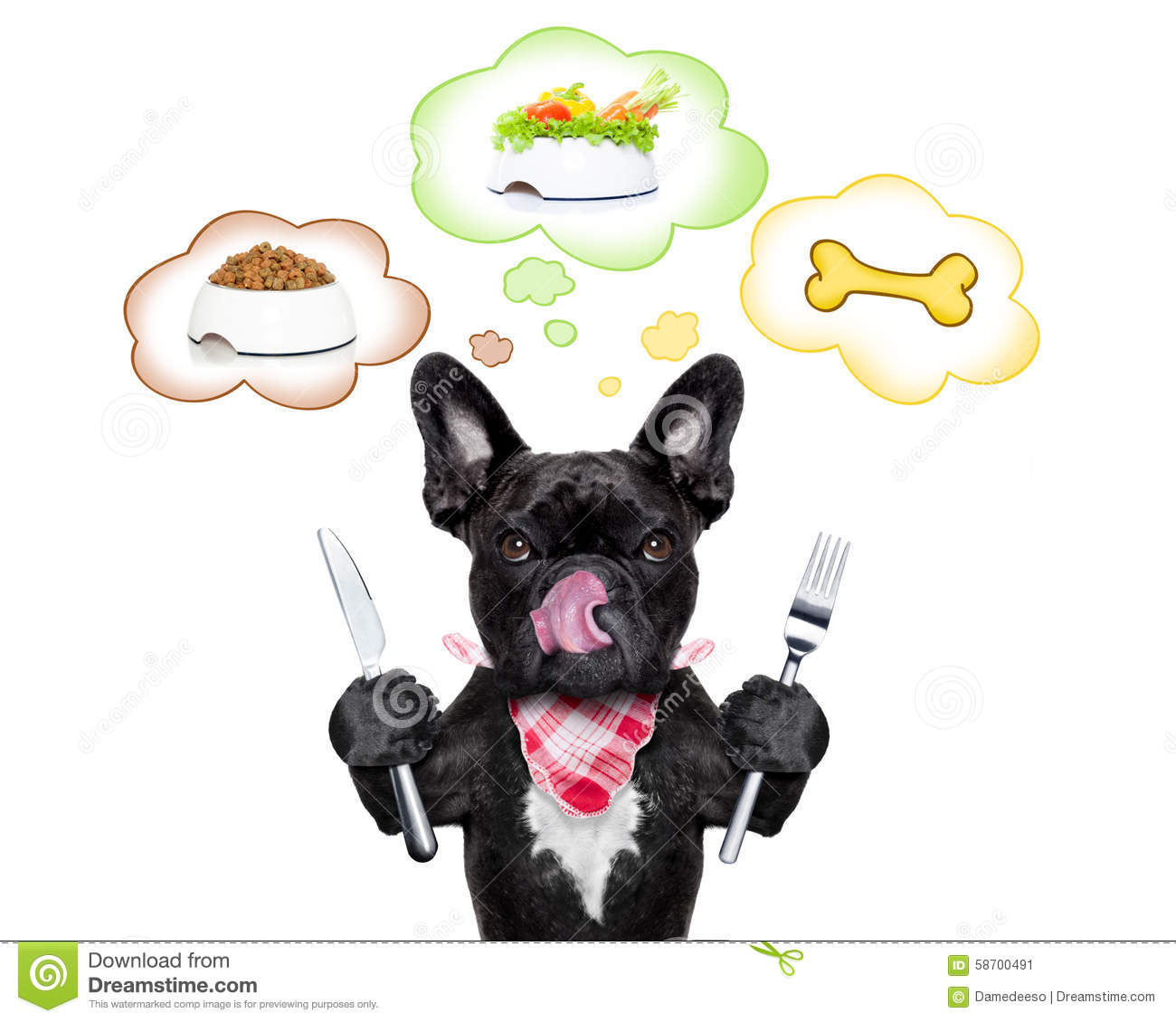 Vegatrian Food For Dogs