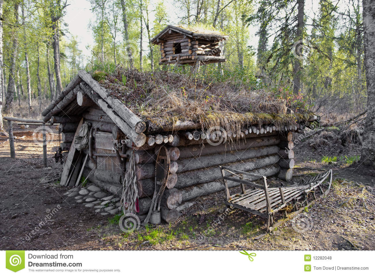 Exterior of timber hunting cabin in forest with dog sled in foreground ...