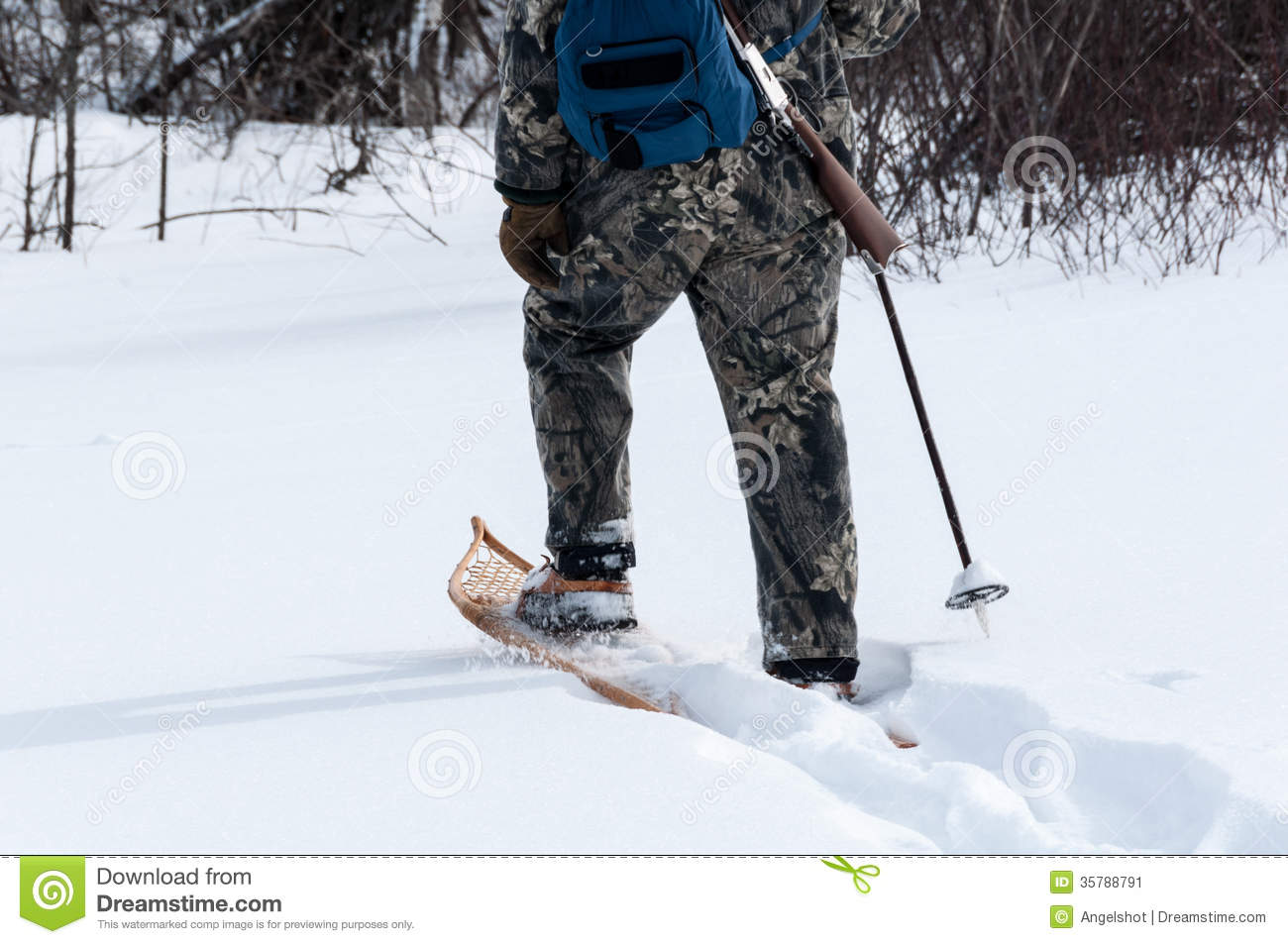 Hunting In Deep Snow With Snowshoes Stock Image Image