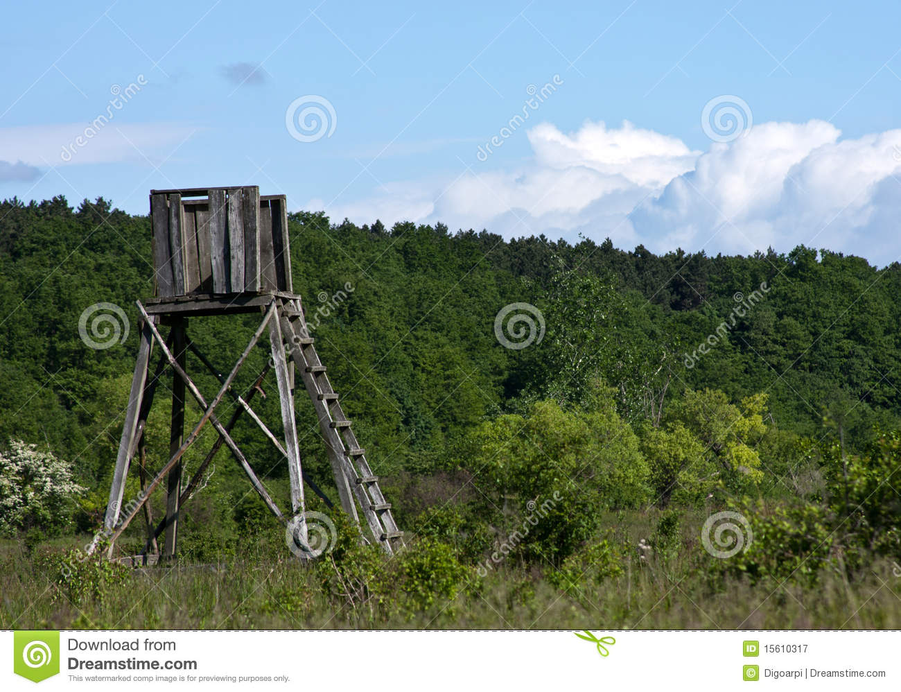 Hunting hut royalty free stock photography image 15610317 for Hunting hut plans