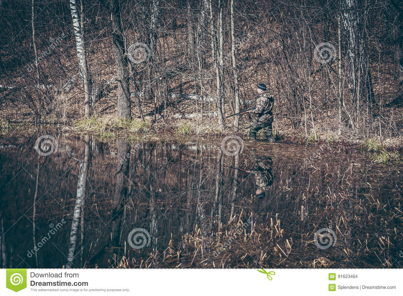 Hunting scene with hunter man stealing in wetland with forest during hunting season