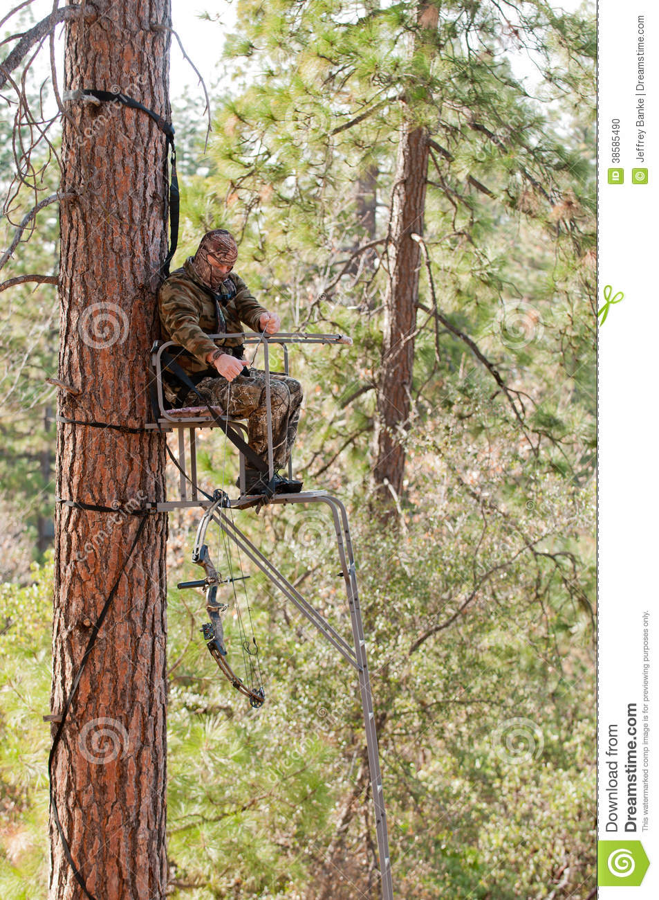 Hunting from a tree stand stock photo image of aiming for Un stand