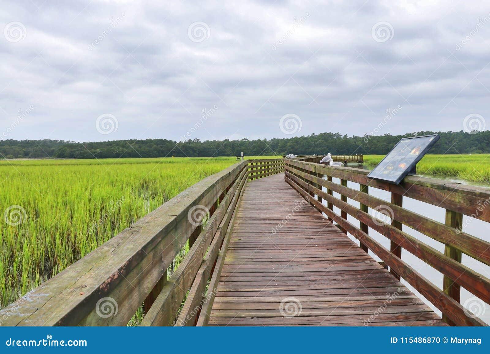 Huntington Beach-Nationalpark, South Carolina, USA