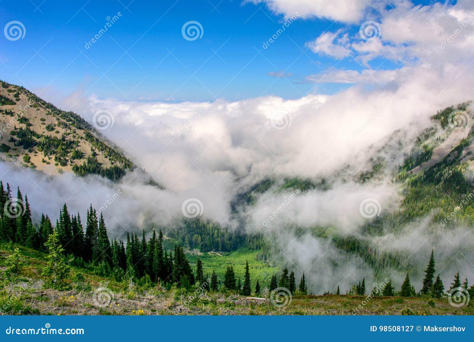 Huraganowa grań W górach Olimpijski park narodowy, stan washington