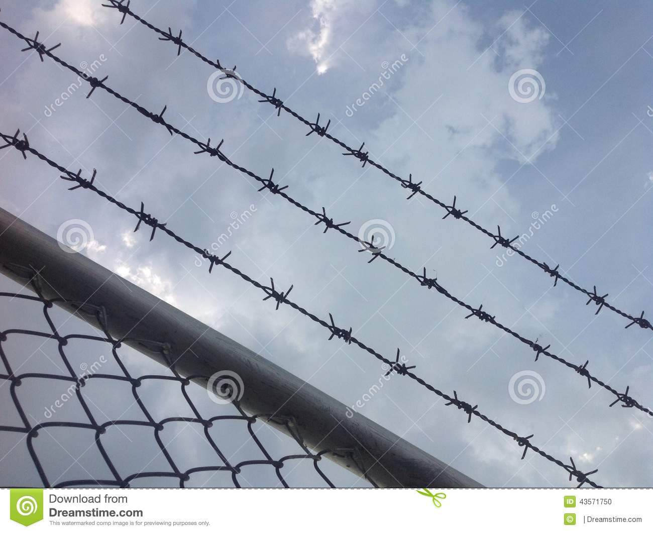 Hurdle or barb wire and blue sky