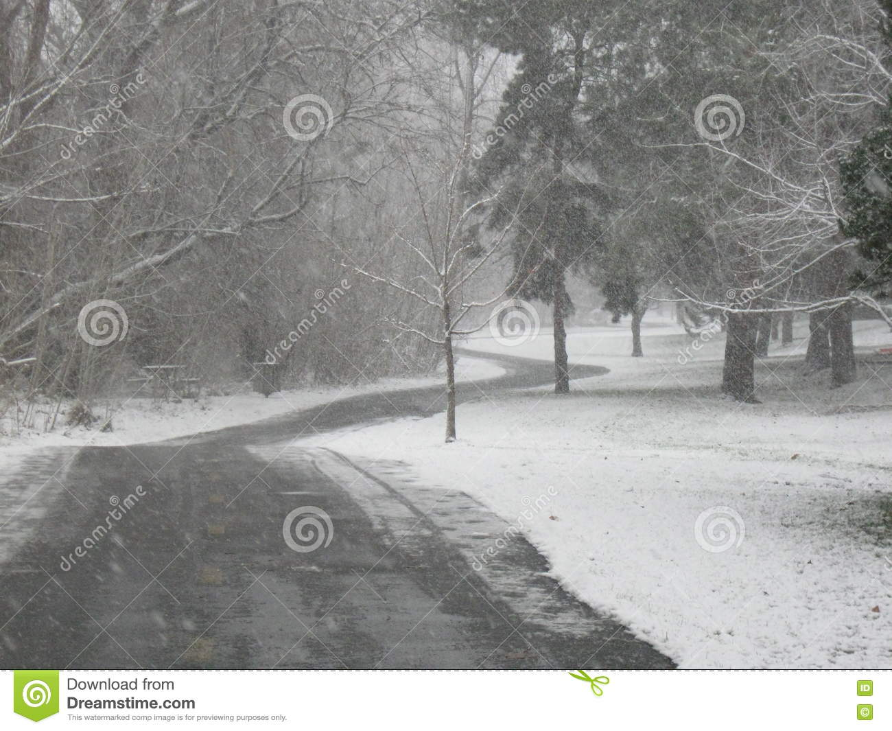 Hurrying in a Snowstorm on the Greenbelt Boise Idaho