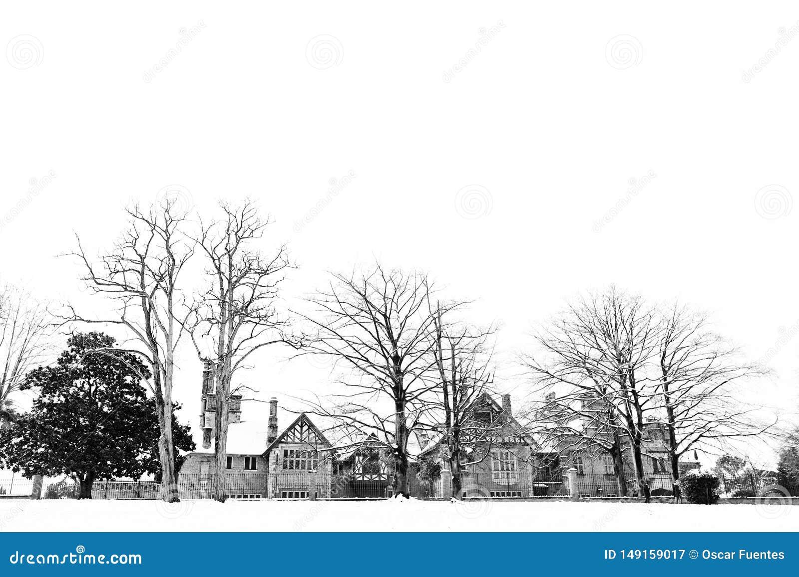 Hus i sn?ig landskap med tr?d Artaza slott i Leioa, baskiskt land