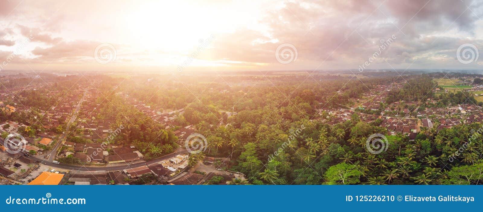 Hus och ris terrasserar sett från ovannämnt med ett surr i Ubud, Bali, Indonesien