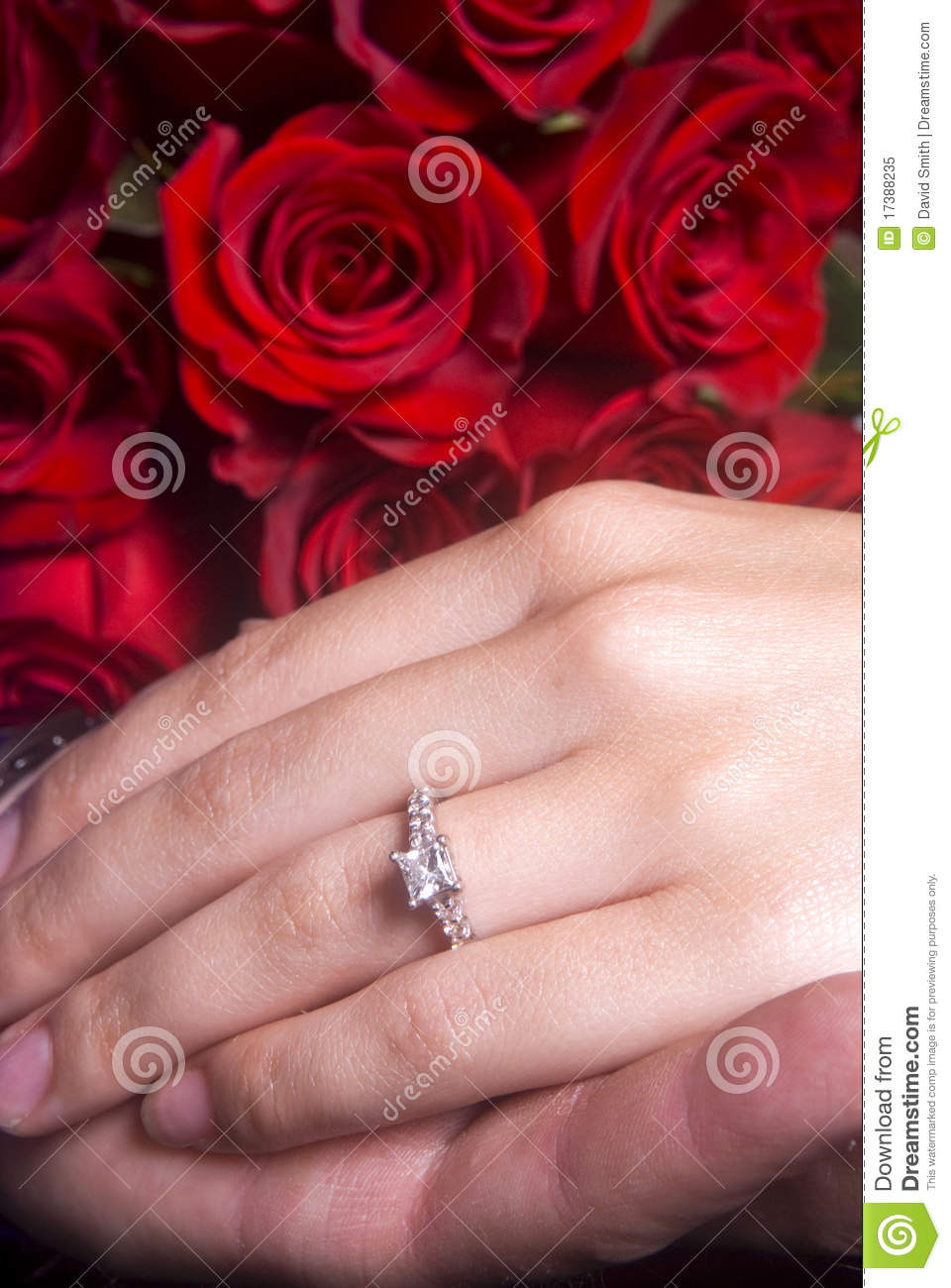 Husband Wife Hands Showing Engagement Ring Stock Images - 71 Photos