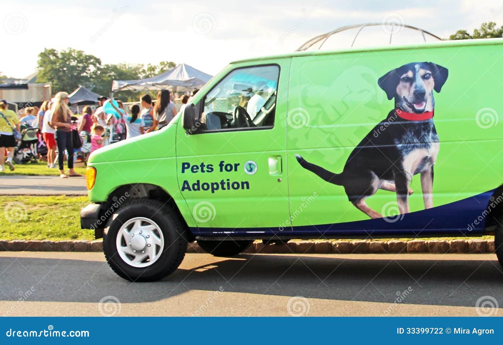Husdjur för adoption