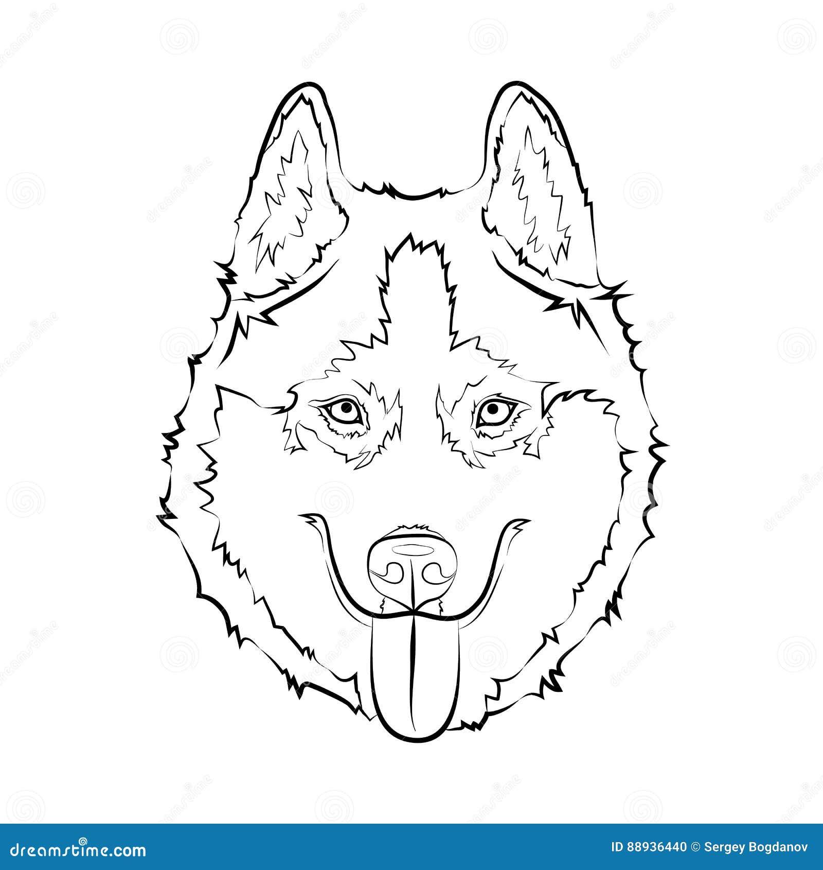 Husky Dog Sketch Stock Vector Illustration Of Black 88936440