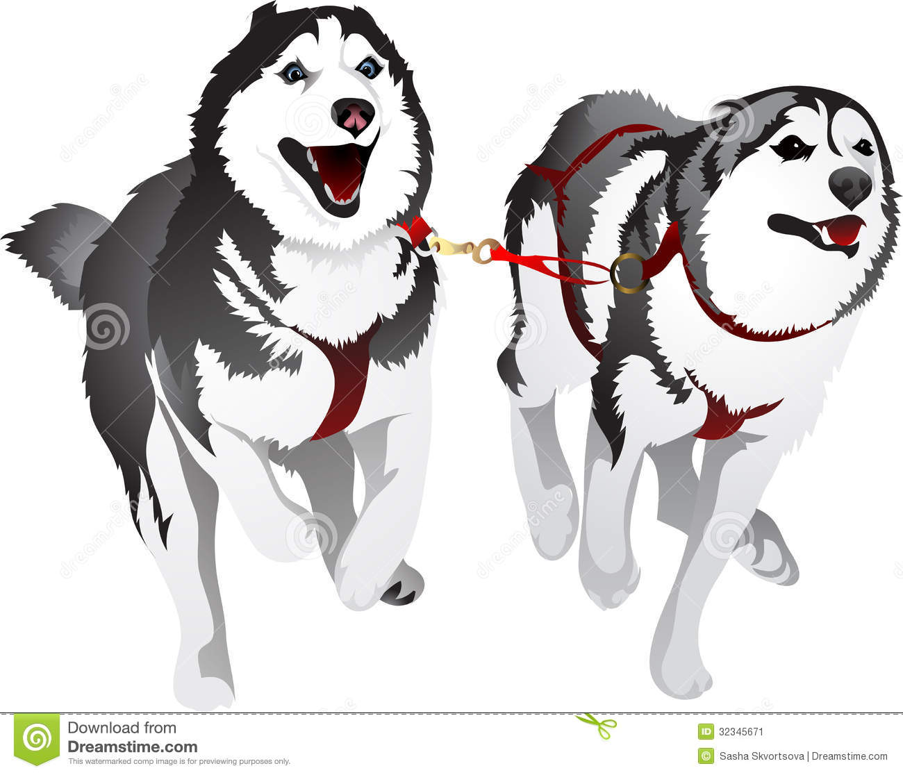 Husky Sled Race In The Sport For Speed Stock Image - Image: 32345671