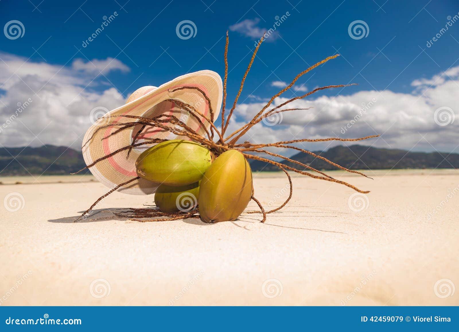 Hut über einem Bündel Coconüssen auf dem Strand