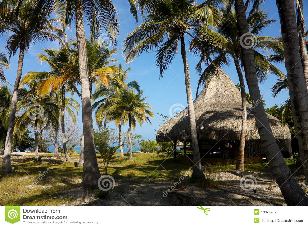 Hut and palms. The Rosario Islands.