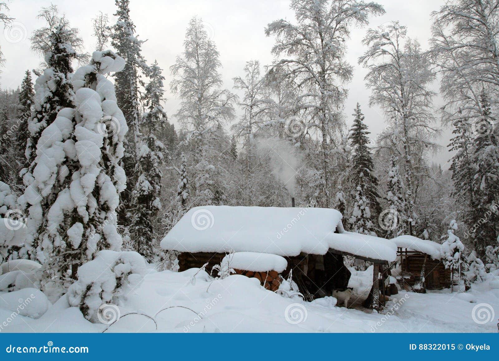 Hut Van De Jager In Siberische Taiga Stock Afbeelding Afbeelding