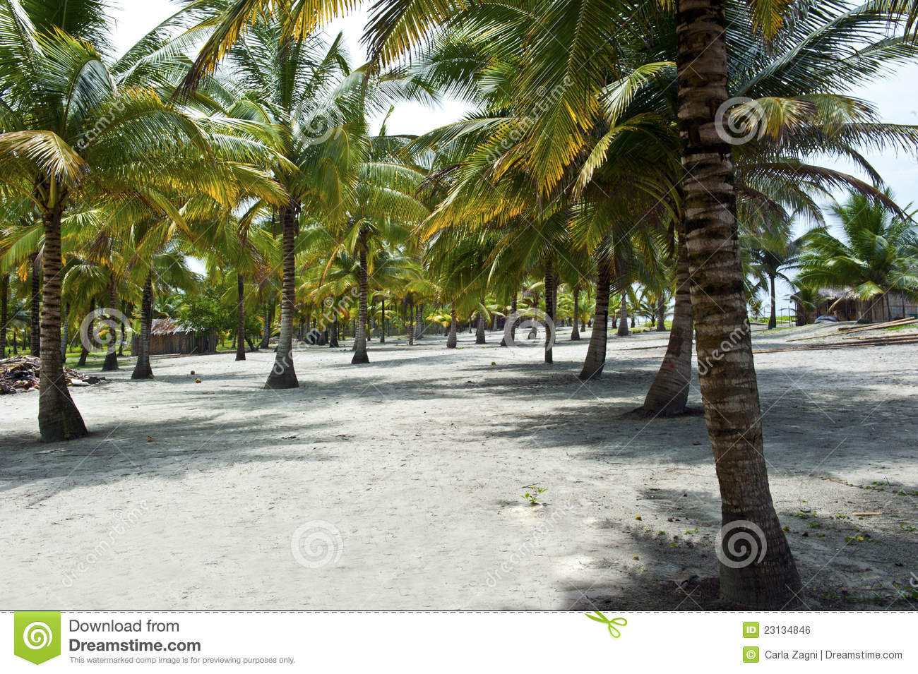 Tropical Beach Huts: Huts On A Tropical Beach Royalty Free Stock Image