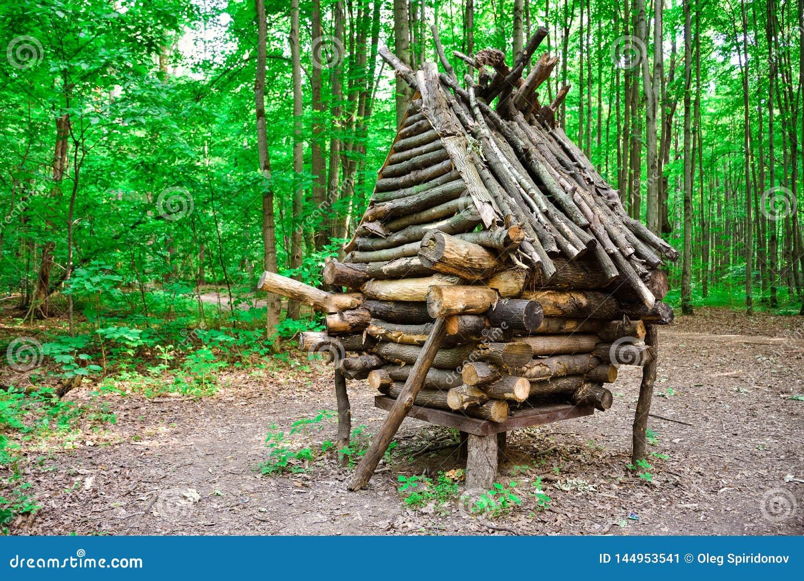 Hutte du baba-Yaga dans la forêt, grange des brindilles, hutte en bois, hutte sur des jambes de poulet