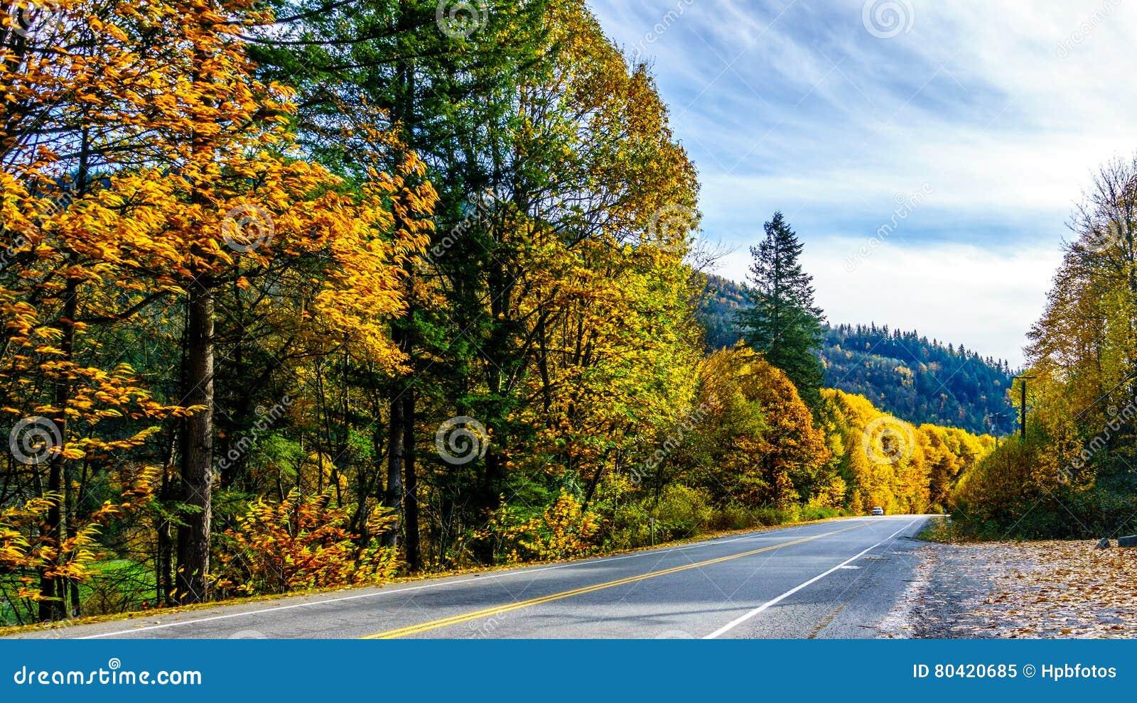 Huvudväg 7, den Lougheed huvudvägen nära bosättningen av Deroche i nedgång färgar i Fraser Valley