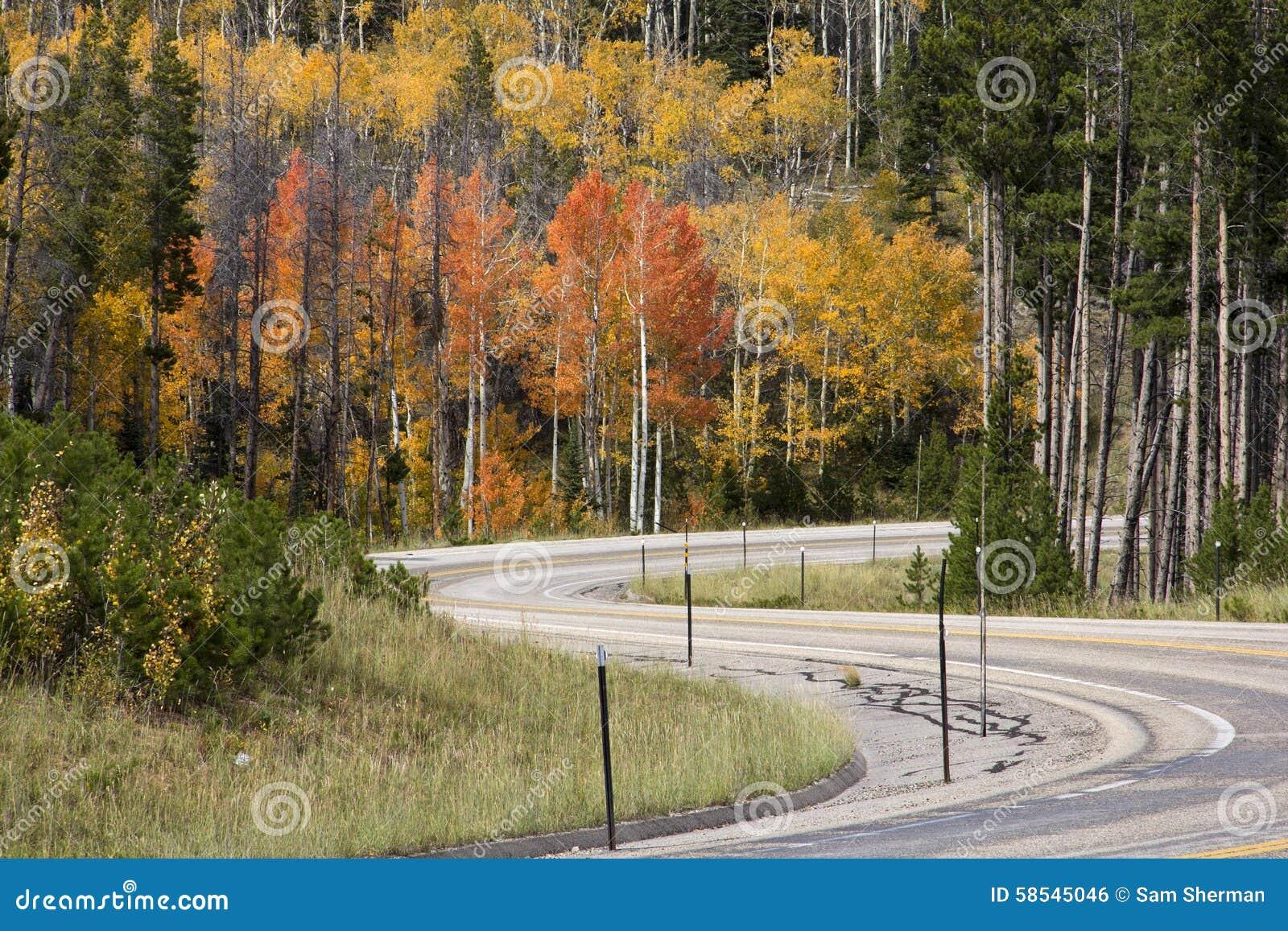 Huvudväg i toppiga bergskedjan Madre berg Wyoming