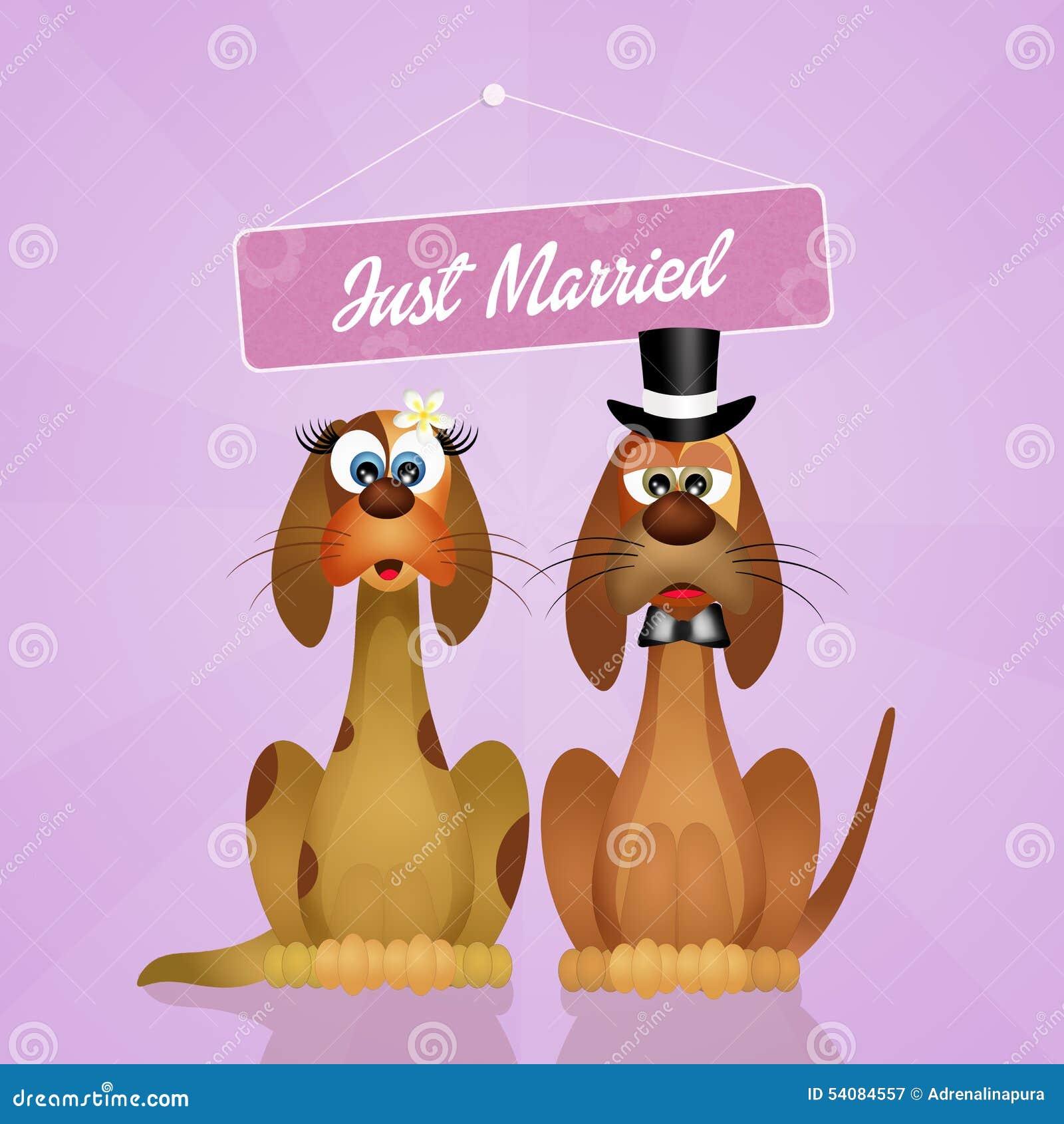 Huwelijk van honden