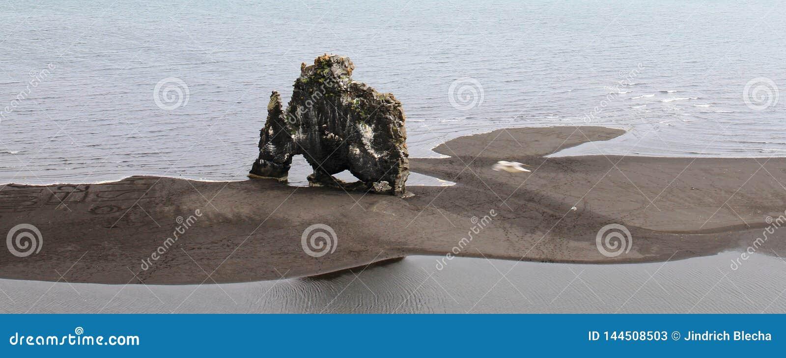 HvÃtserkur, Nord-Island