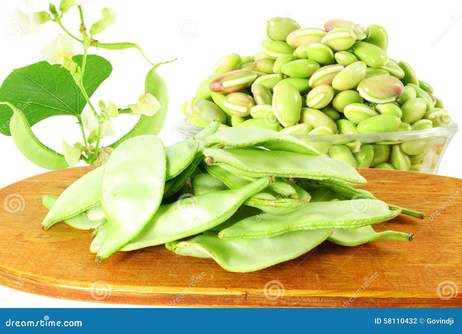 Hyacinth Bean Valor Or...