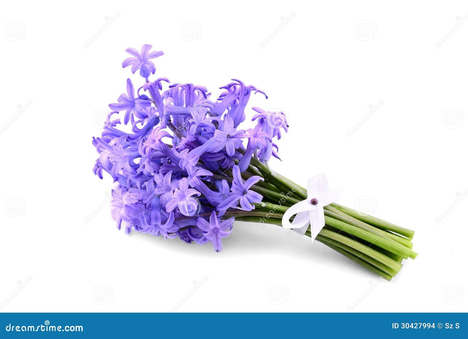 Bouquet violet hyacinth stock photos images pictures 1561 hyacinth bouquet stock images dhlflorist Choice Image