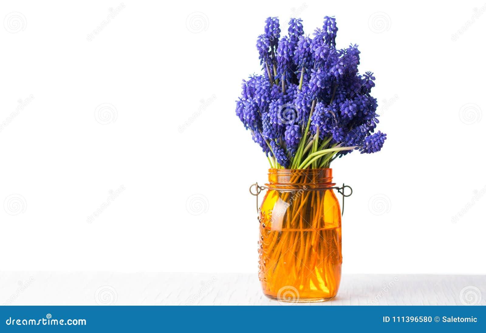 Hyacinth flower bouquet in a vase