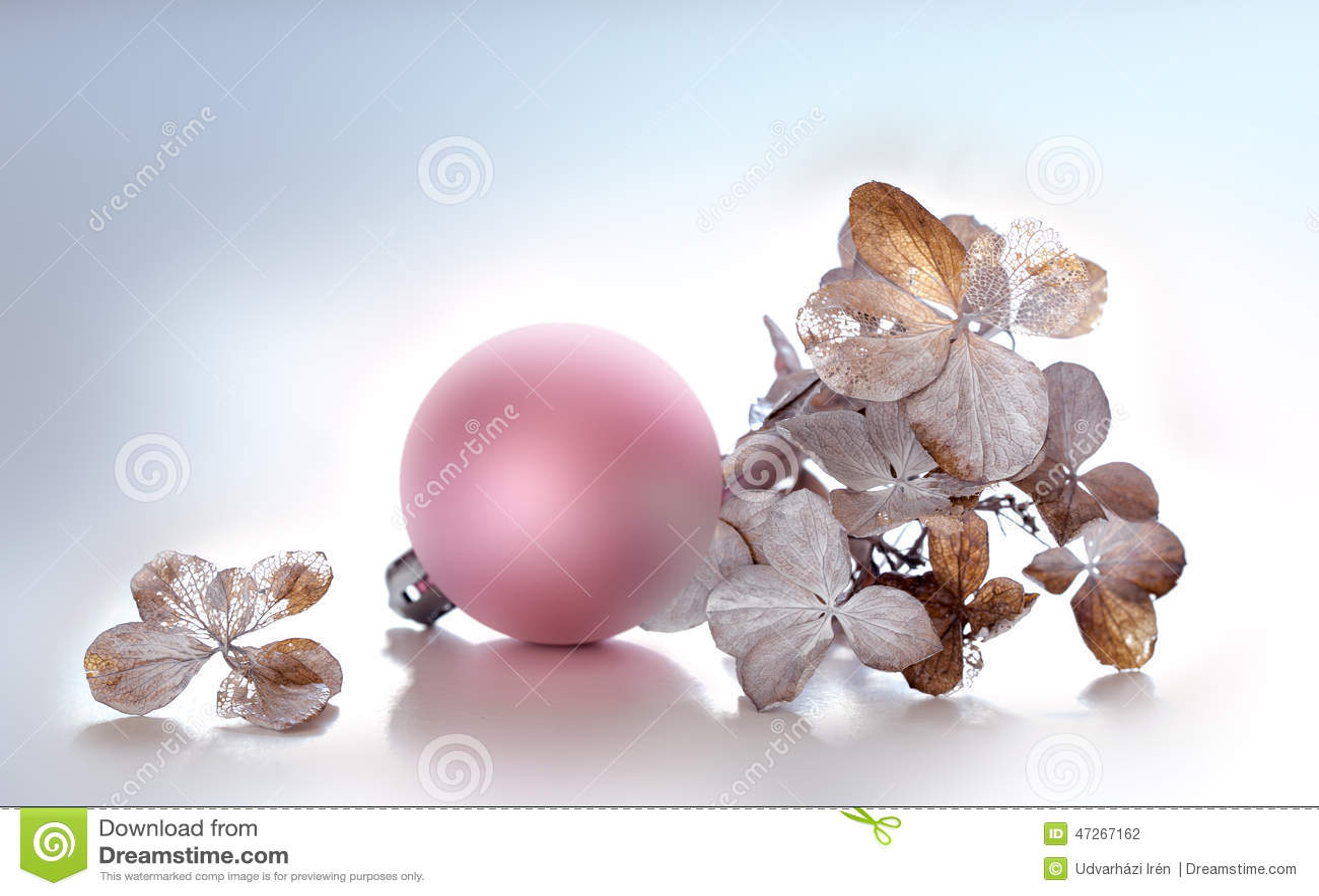 Hydrangea και ρόδινη σφαίρα Χριστουγέννων