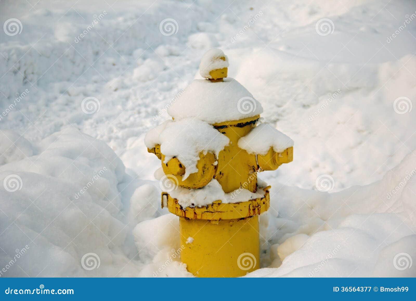 Hydrant bedeckt mit Schnee