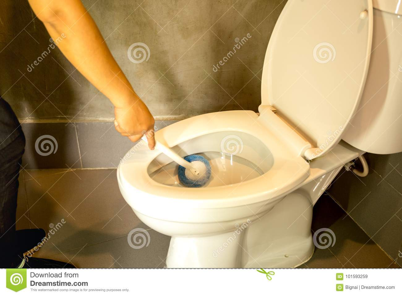 Terrific Hand Of Woman Cleaning Toilet Bowl Using Blue Brush Stock Pabps2019 Chair Design Images Pabps2019Com