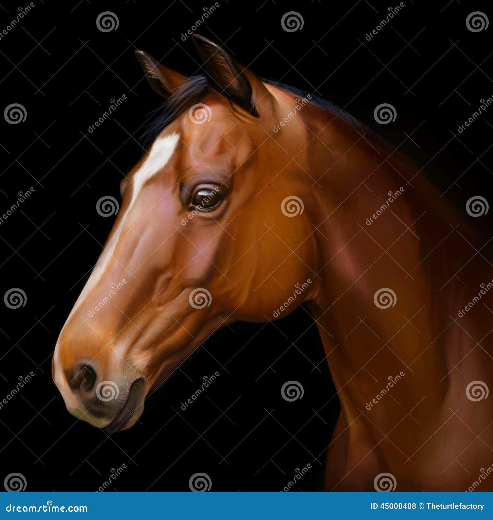Hyper Realistic Digital Painting Of A Horses Head Stock Illustration Illustration Of Realism Mane 45000408