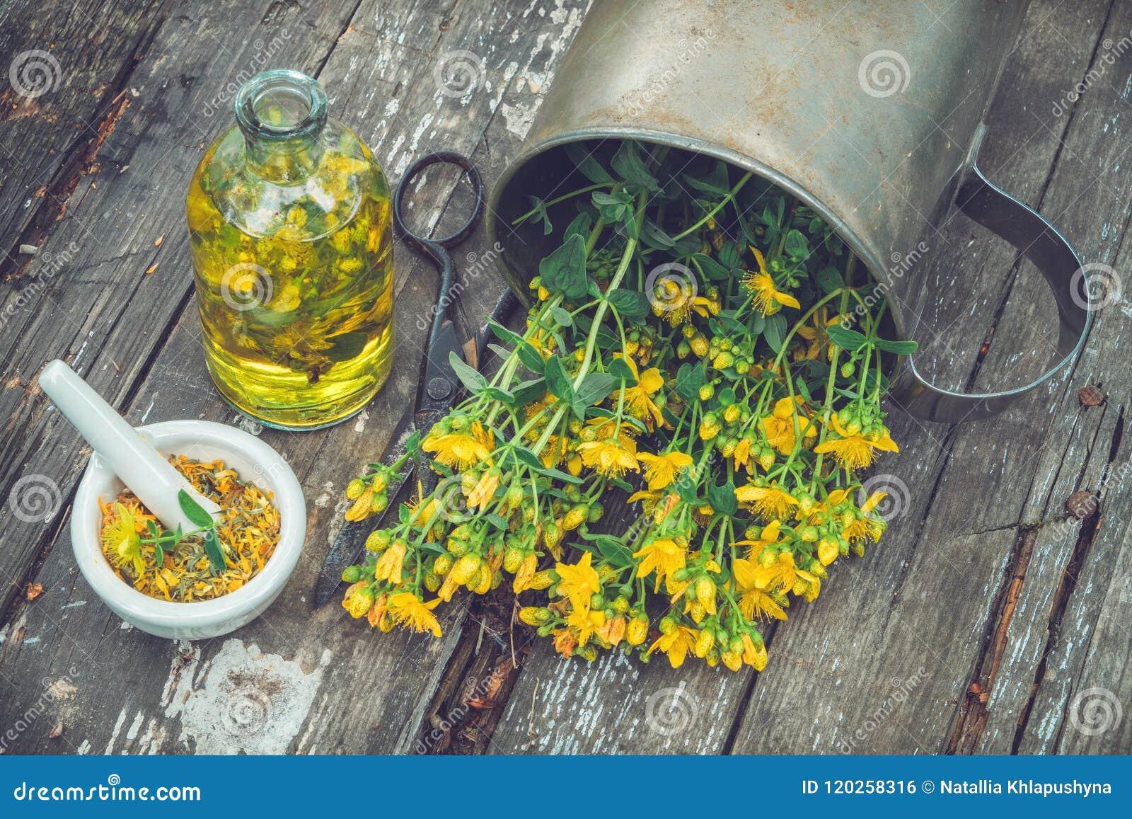 Hypericum - St Johns wortinstallaties, olie of infusiefles, mortier op houten raad