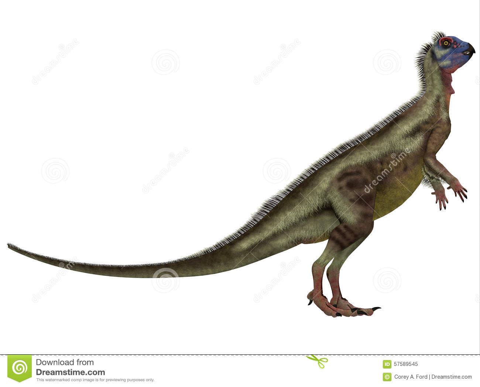 Hypsilophodon sobre o branco