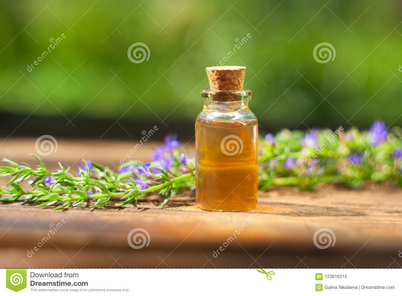 Hyssop essential oil in beautiful bottle on table