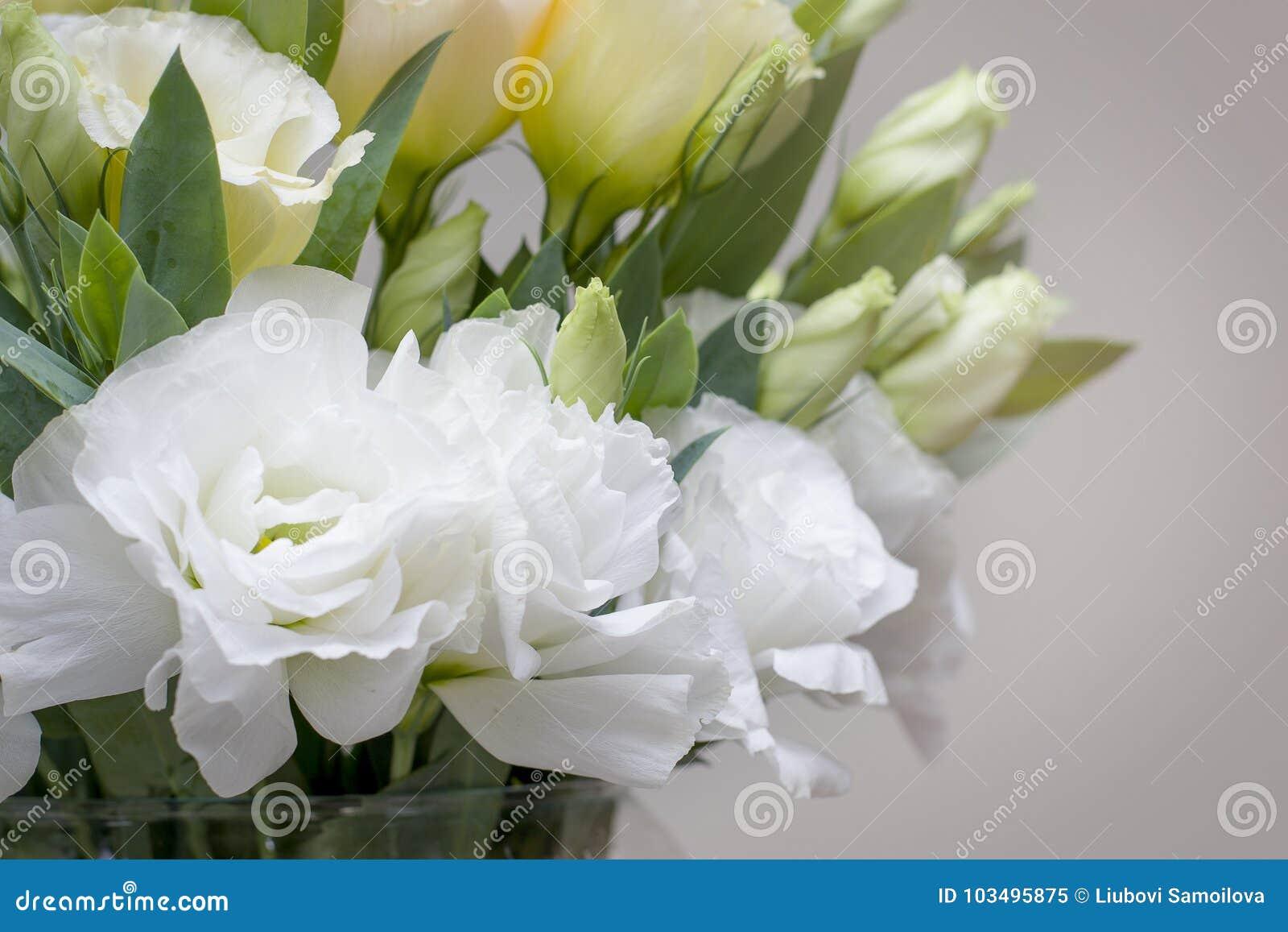 Fiori Lisianthus Bianchi.I Bei Fiori Bianchi Di Lisianthus Guardano Cosi Tanto Le Rose
