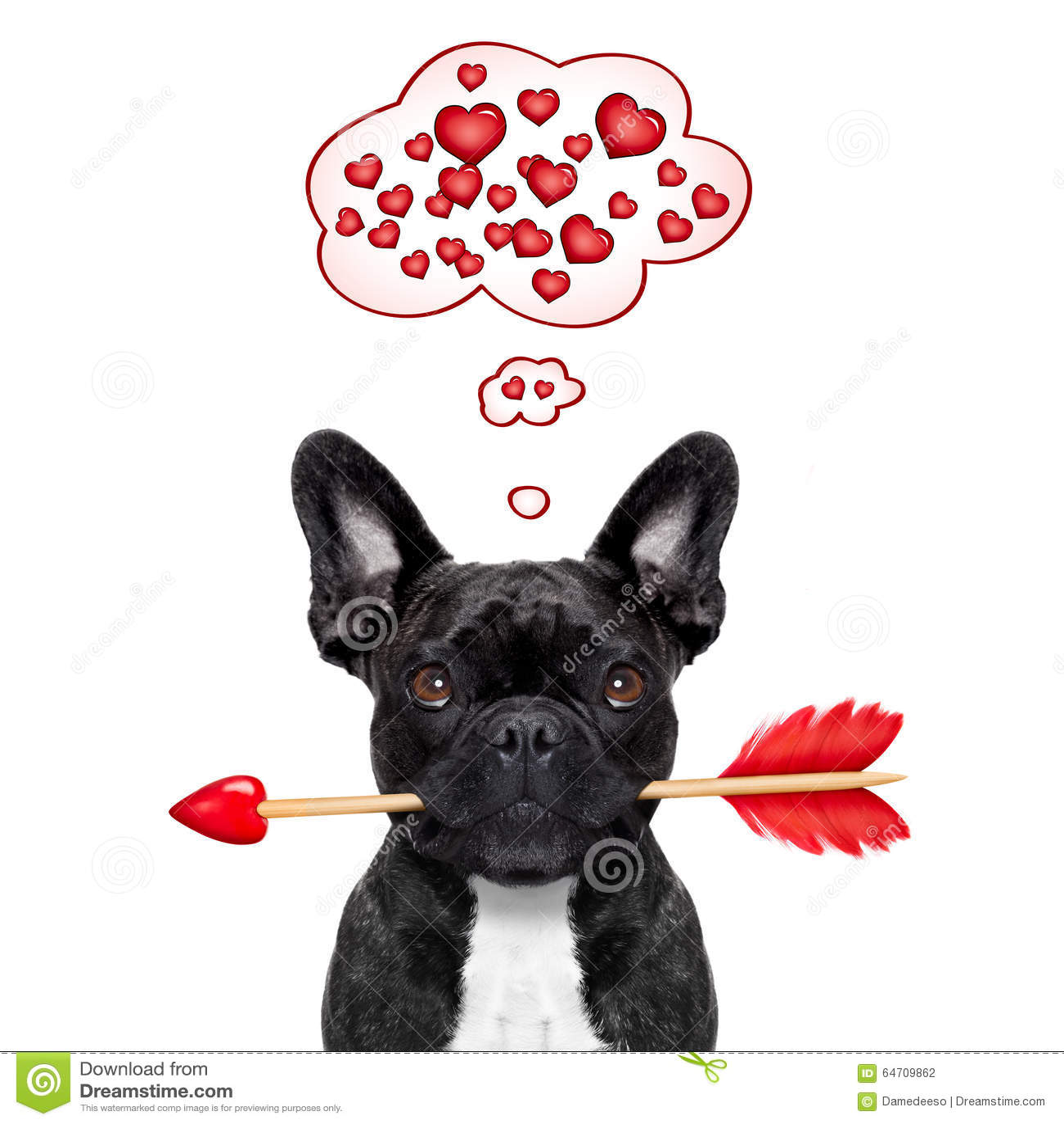I biglietti di S. Valentino inseguono nell amore