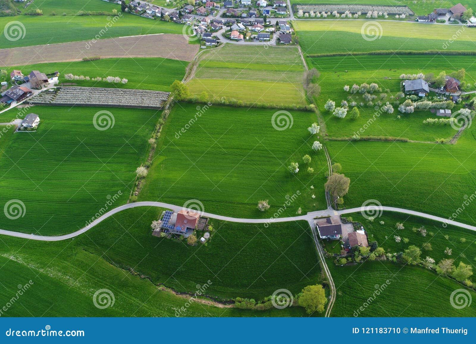 I campi verde intenso con le aziende agricole da un ` s dell uccello osservano la vista