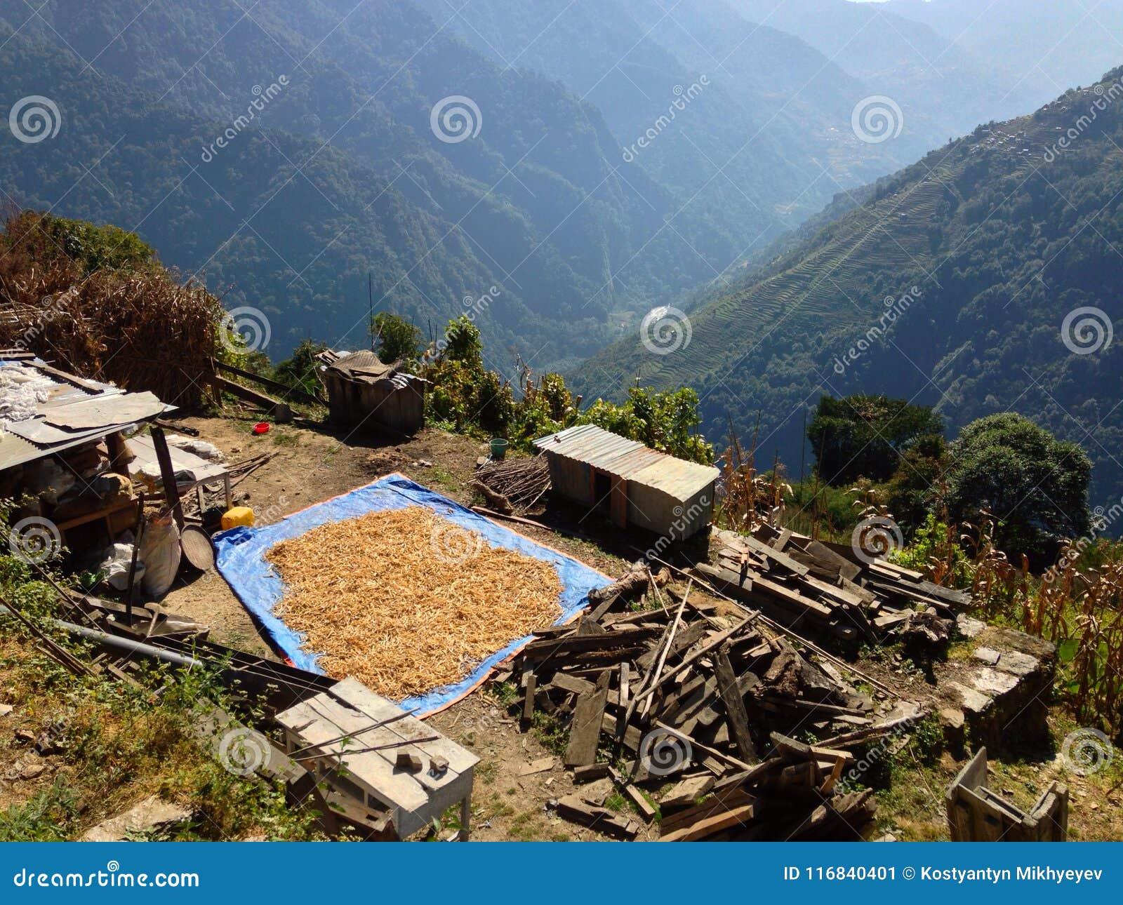 By i den HimalayasbergAnnapurna treken