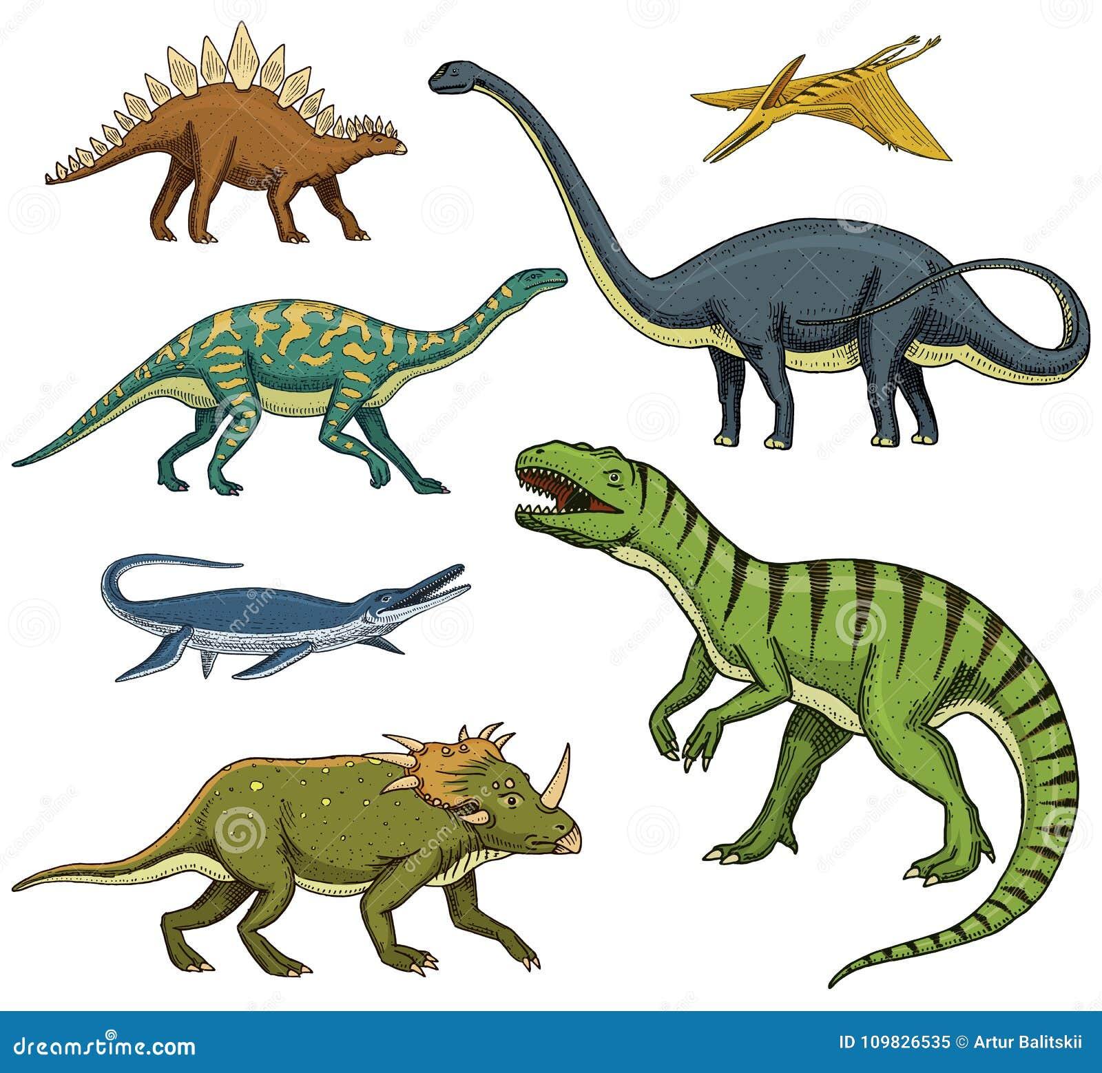 ha piumato!!! 1:50 in scala T-Rex Dinosauro Modello-come nessun altro