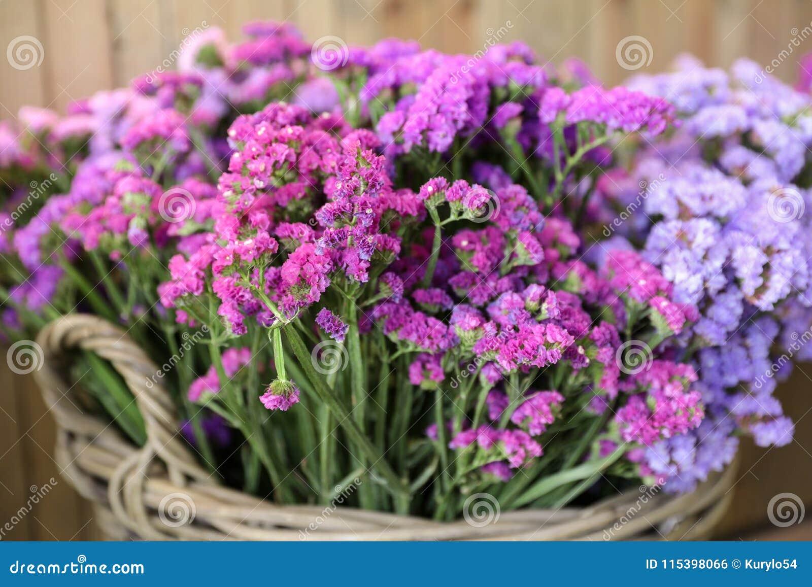 I en variation för vide- korg av limoniumsinuatum- eller staticesalem blommor i rosa färger shoppar lilan, violetta färger i träd