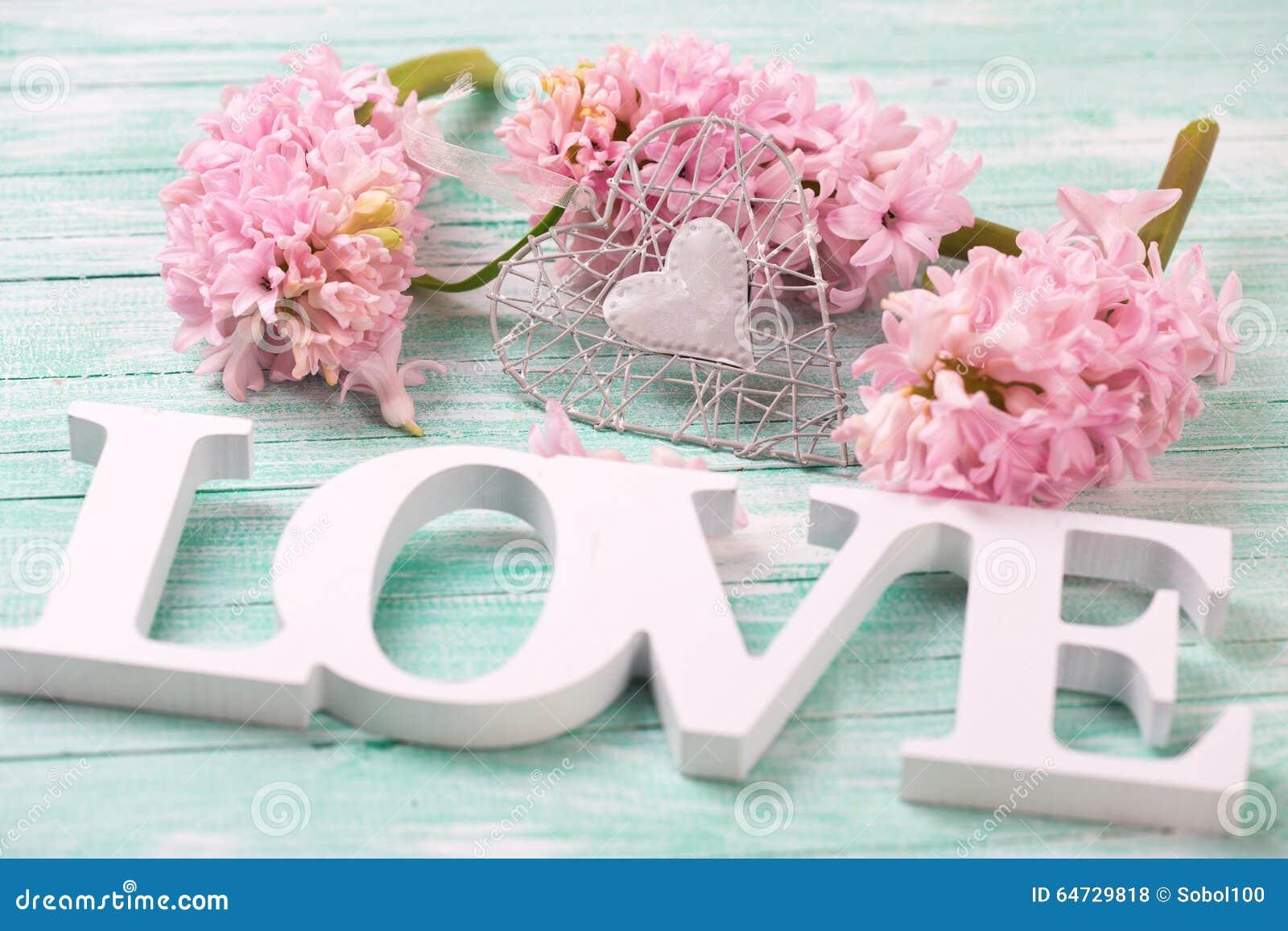 I fiori rosa dei giacinti, il cuore decorativo e la parola di legno amano la o