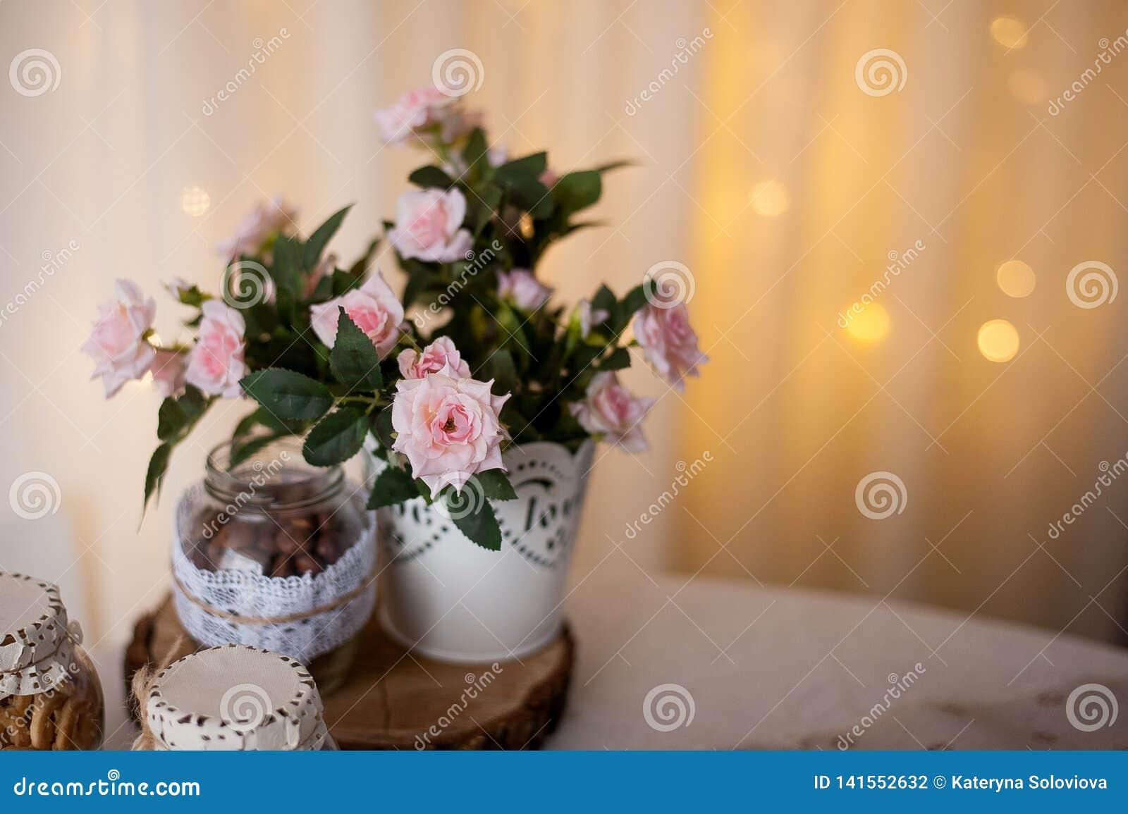 I fiori spettacolari della molla mescolano il giardinaggio del contenitore