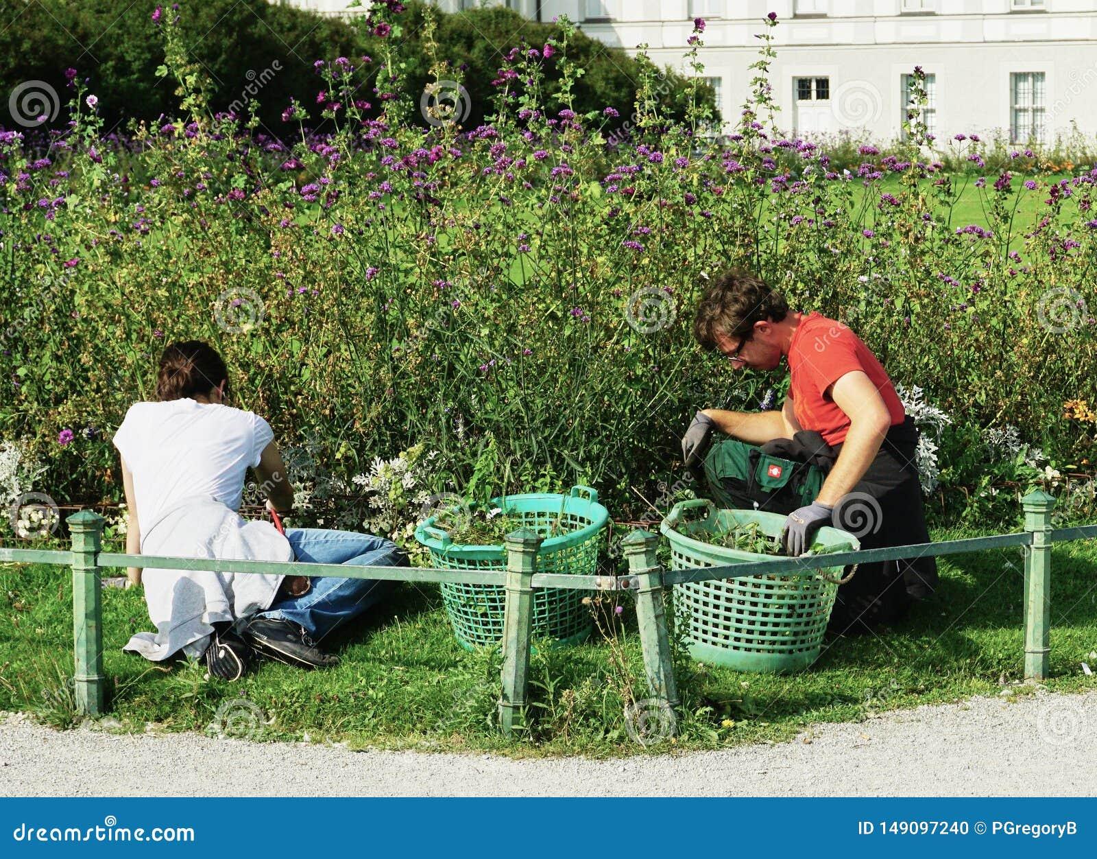 I giardinieri tendono ai letti di fiore fuori del palazzo di Nymphenburg