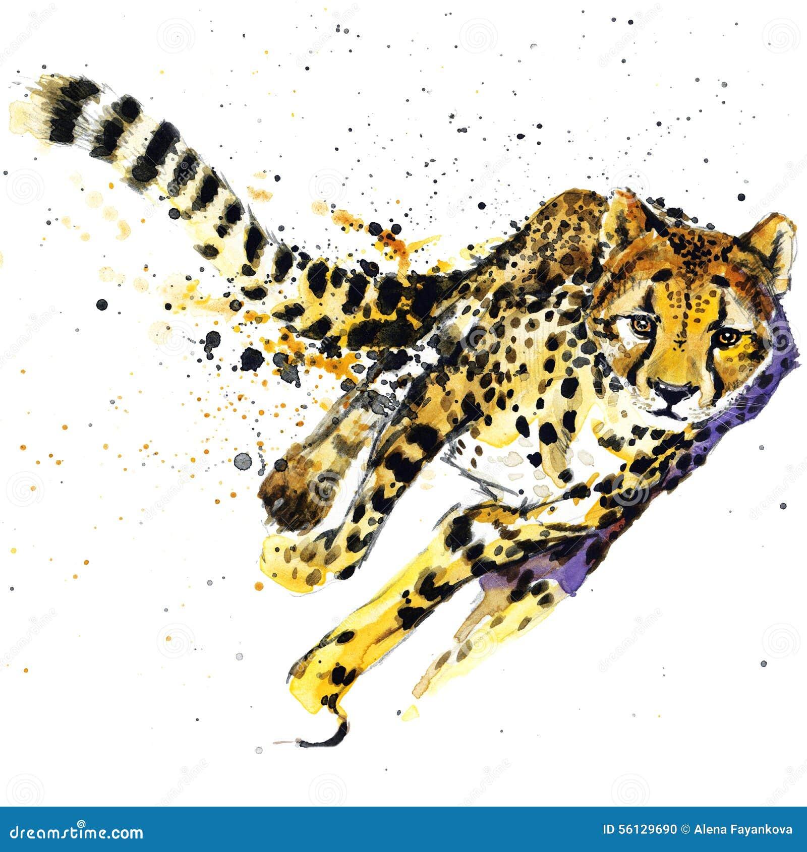 I grafici della maglietta del ghepardo, illustrazione africana del ghepardo degli animali con l acquerello della spruzzata hanno