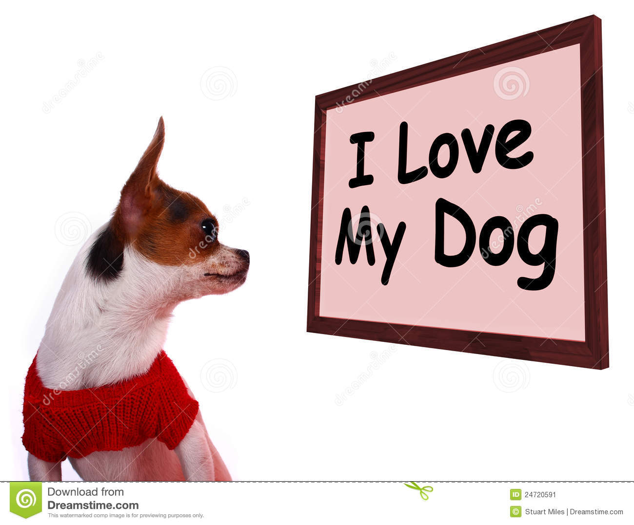 describe my lovely dog By that time, baby dog was very cute, lovely and small so we started to make a dog house with my fathers help although we had bad skill, we made the dog house hard the great part of making the dog house was made by my father.