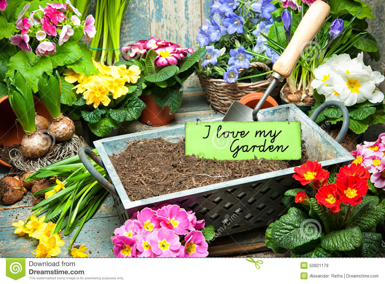 I love my garden stock photo image 50821179 for Gardening is my passion