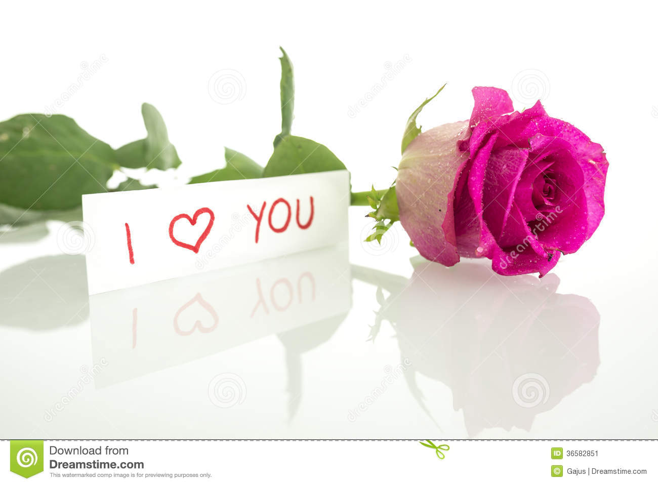 I Love You Rose Stock Images Download 5425 Royalty Free Photos