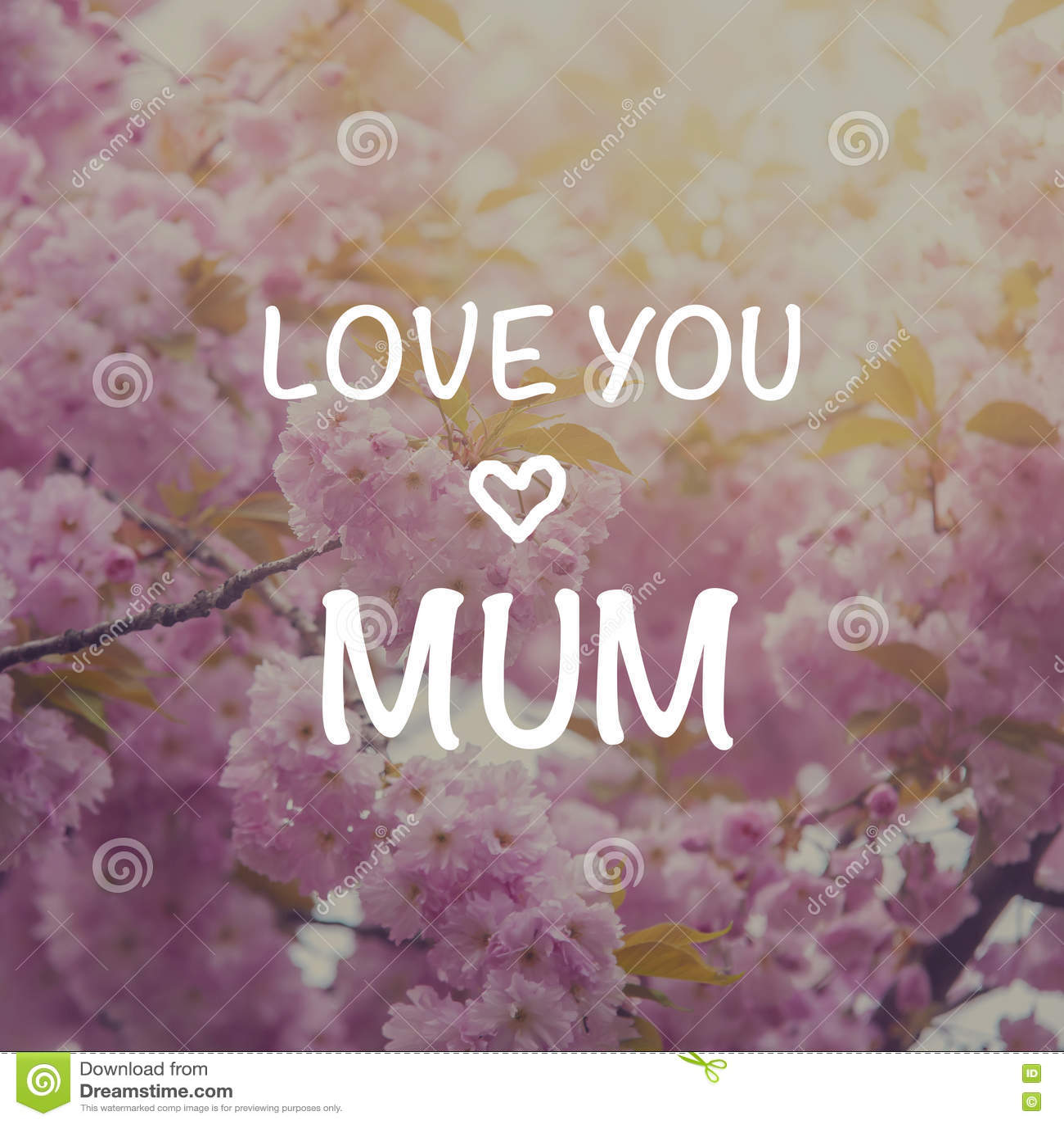 I love you mum card stock image. Image of sakura, dream ...